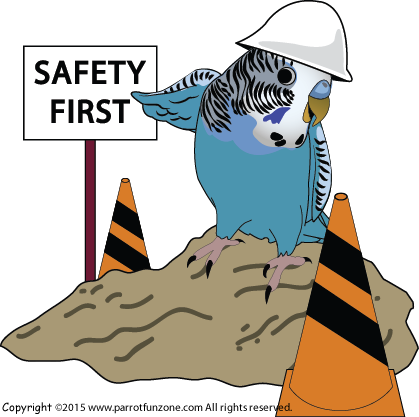 CR SAFETY FIRST