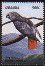 stamp AfricanGrey
