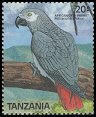 stamp AfricanGrey2