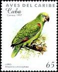 stamp Amazon2