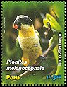 stamp Caique2
