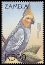 stamp Cockatiel