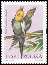 stamp Cockatiel2