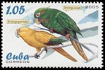 stamp Conure2