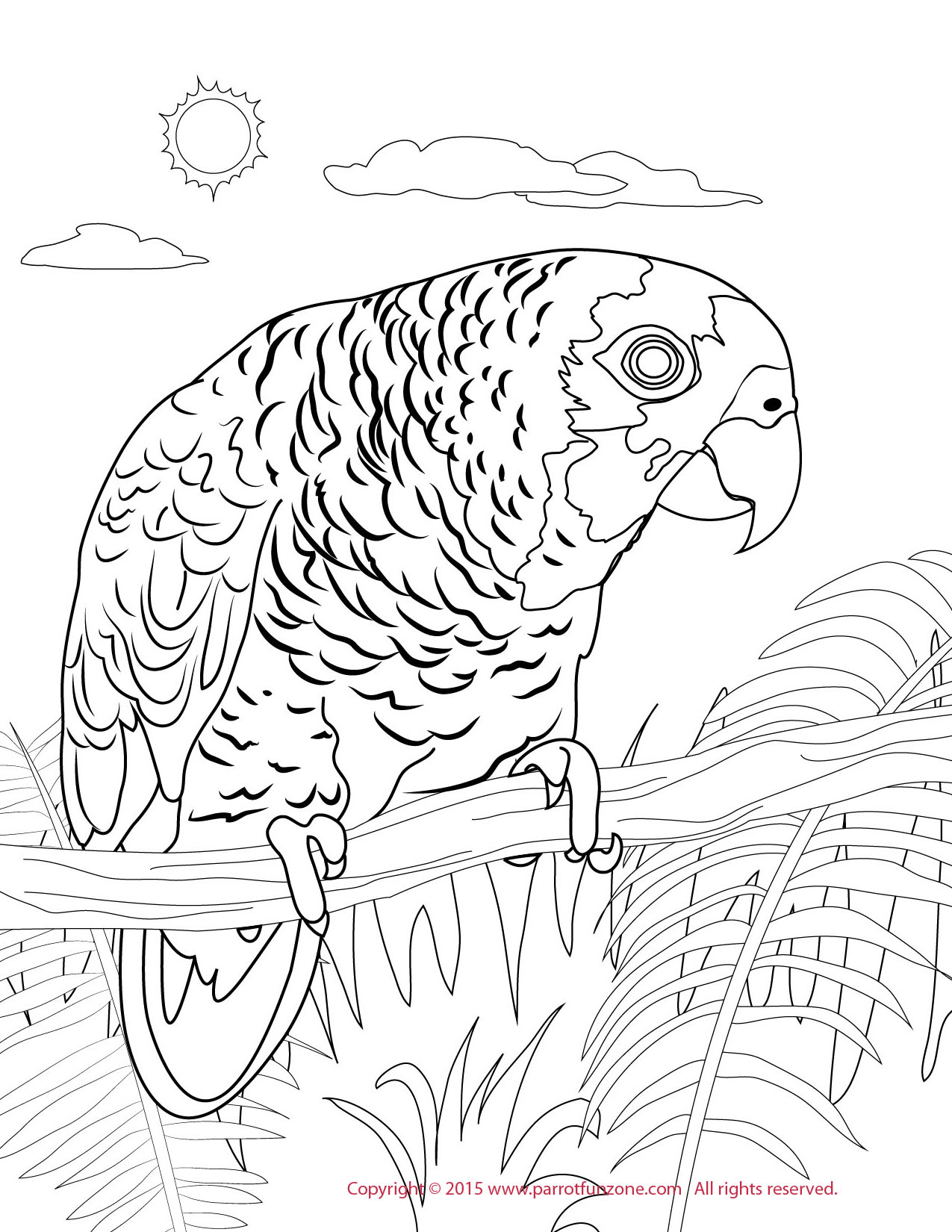 blue front amazon coloring page